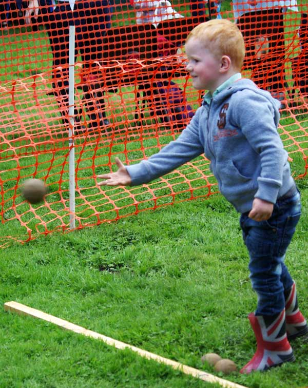 Young visitor throwing at the coconut shy Fair and Show 2015